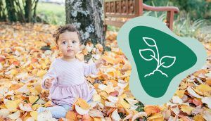 """A small child in a pink dress is seated in a pile of leaves, with the green """"Grow"""" icon"""